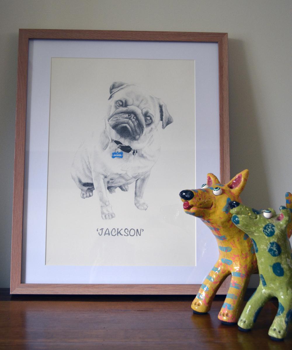 jackson framed