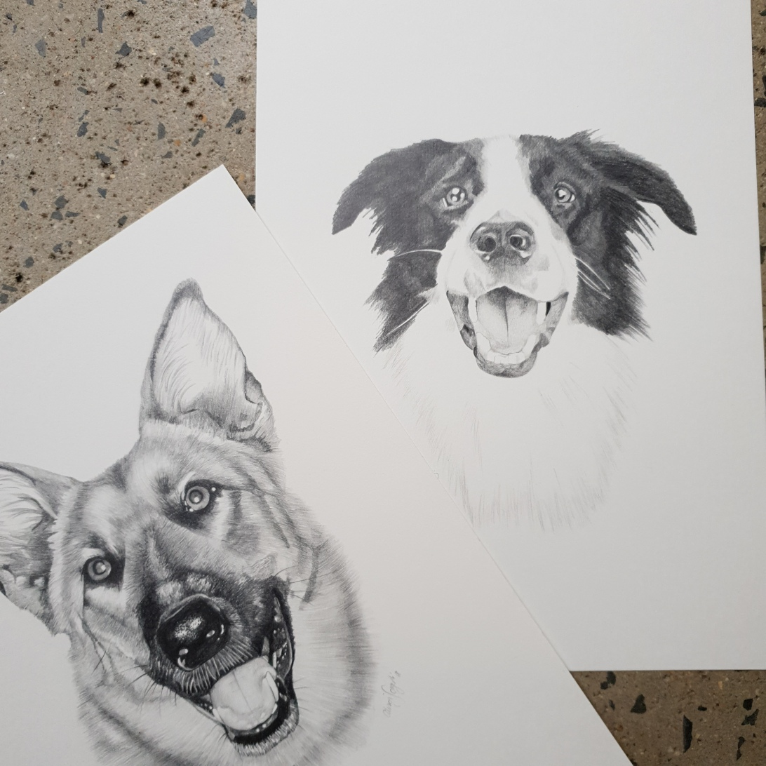 Graphite pencil custom pet portrait